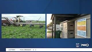 Florida Department of Health help farmworkers