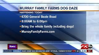 Annual Dog Days event held at Murray Family Farms
