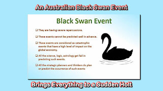2021 AUG 23 An Australian Black Swan Event Brings Everything to a Sudden Holt