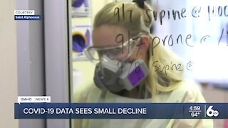 Idaho continues to see small decline in COVID-19 cases
