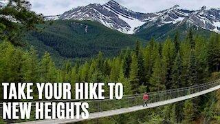 This Daring Alberta Hike Leads To A Sky-High Mountain Suspension Bridge