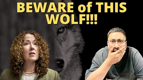 It looks like we have a WOLF in SHEEP'S CLOTHING!!!