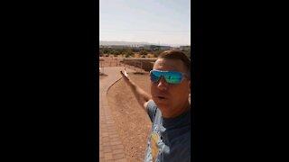 Pueblo Grande Ruins