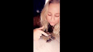 Dog get jealous when owner pets turtle