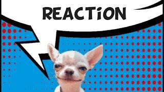 Reaction Brawl Stars