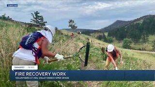 In depth: Wildfire concern, burn area restoration, resource guide