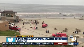 Surfer has close call with shark