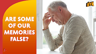How Does Our Memory Work?