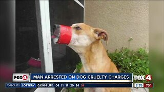 Man arrested on aggravated animal cruelty charges
