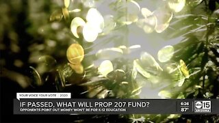 If passed, what will Prop. 207 fund?