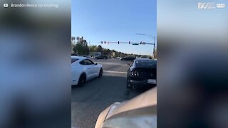 Driver burns rubber then crashes car on ego trip