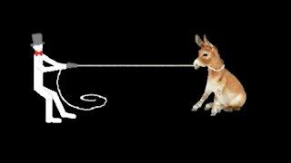 Reel Physics: gravitational pull