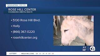 Rose Hill Center Animal Care Program