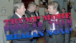 Trump More Popular Than Reagan Now!