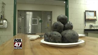 MSU growing, selling purple potatoes for chips