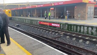 SOUTH AFRICA - Cape Town - Metrorail resumes limited train service under lockdown level 3(Video) (Bzx)