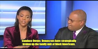 Candace Owens: Democrats have strategically broken up the family unit of black Americans.