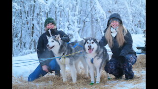 Huskies Dog Sledding with Transportation and Photos Service in Fairbanks, Alaska