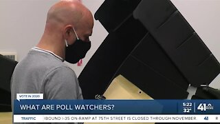 What are poll watchers?