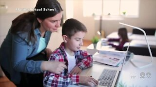 What are your virtual education options for next school year?