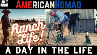 RanchLife, a day in the life, Texas, and New Mexico