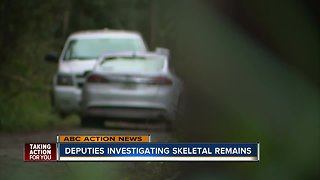 Skeletal remains found in New Port Richey