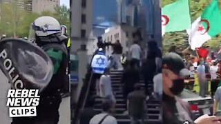 Rebel reporter punched during Mayhem in Montreal | David and Sheila react