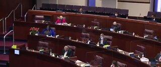 Nevada State Senate passes COVID-19 small business protection bill