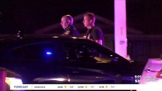 'Highly decorated' Tampa police officer killed in crash on I-275 with wrong-way driver