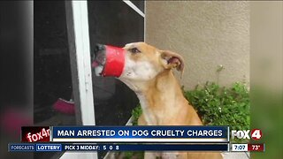 Accused dog abuser expected in court Tuesday