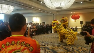 SOUTH AFRICA - Cape Town - Chinese New Year (Video) (A4p)