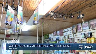 Water quality affecting Southwest Florida businesses