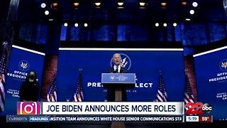 Joe Biden announces more White House roles as President Trump's court losses increase