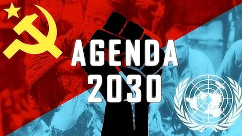 AGENDA 2030: IS THIS THE FINAL SOLUTION?