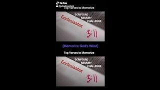 Top Verses To Memorize, Ecclesiastes 3:11