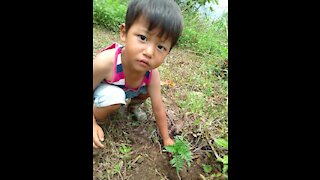 Daryl farming