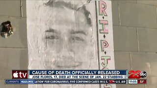 Cause of death in deadly stabbing released