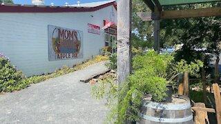 COVID Transforming outdoor restaurant patio beautiful display part 1