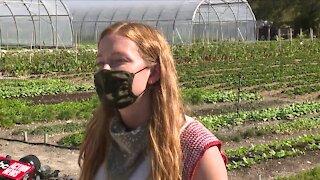 Local community starts urban farm