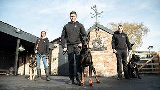 Intruders Beware! The World's Toughest Guard Dogs   BIG DOGZ