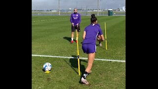 Reaction and training skills with women's pro players.