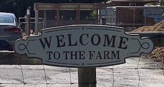 Spencer Family Farm: Photo Gallery
