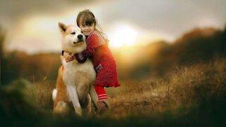 Loving Lover dog