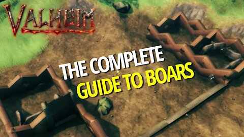 Complete Guide To Boars - Valheim