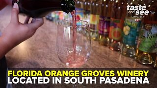Florida Orange Groves Winery | We're Open