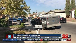 Dogs attack woman in front yard