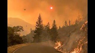 Driving Through Wild Fire