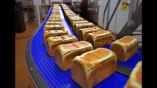 Albany Bread bakery celebrates 50 years making bread