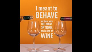 I meant to behave but there was wine [GMG Originals]