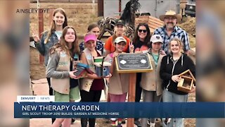 Girl Scout Troop 3010 creates bee-friendly therapy garden